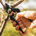 Solid™ Bypass Pruner (P131) Coming soon!